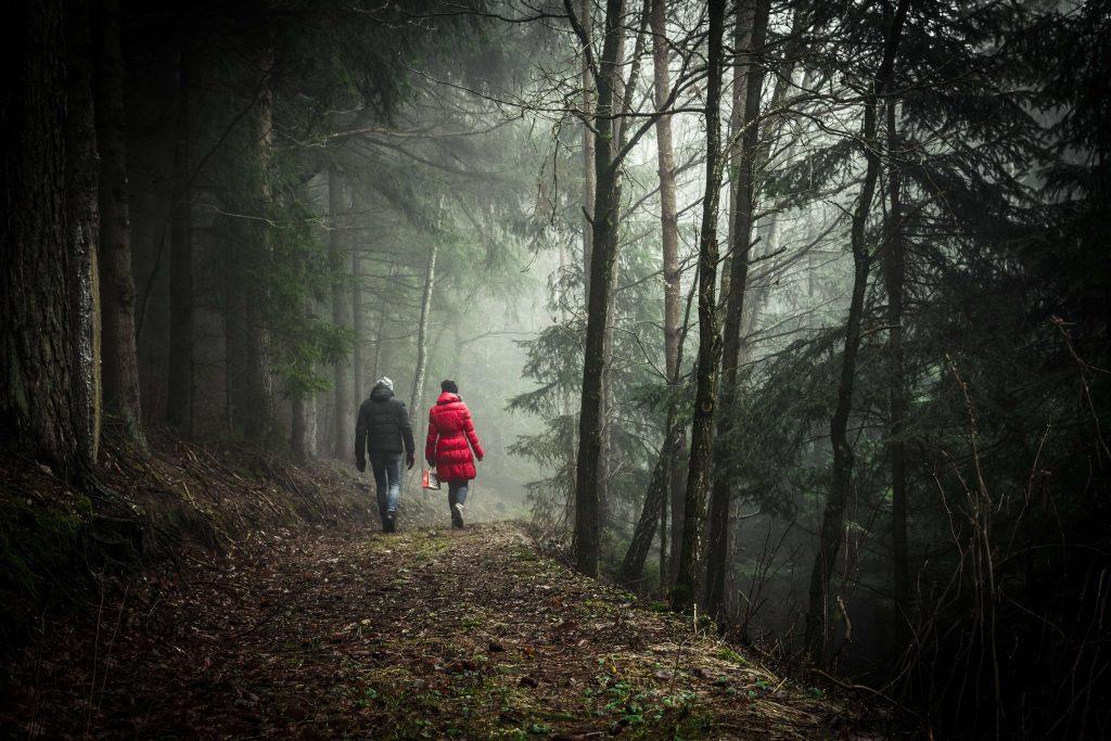 Гулять пешком