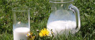 Аллергия на молоко - это миф или реальность