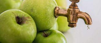 Свежевыжатые соки польза и вред для здоровья